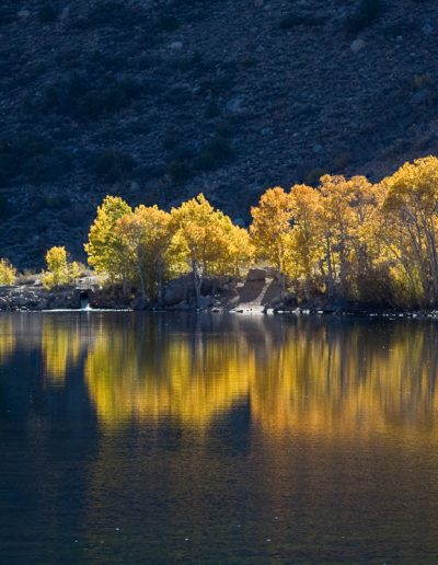 Ellery Lake, Yosemite NP