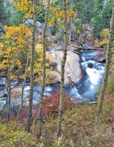 Lee Vining Creek