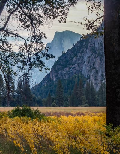 Half Dome, Cook's Meadow