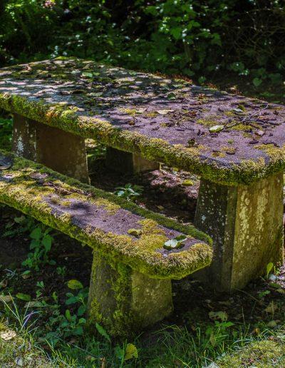 Unused picnic table
